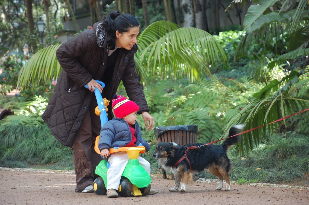 This pair provided a welcome distraction for the dog (previous photograph) in the Jardim da Estrela.
