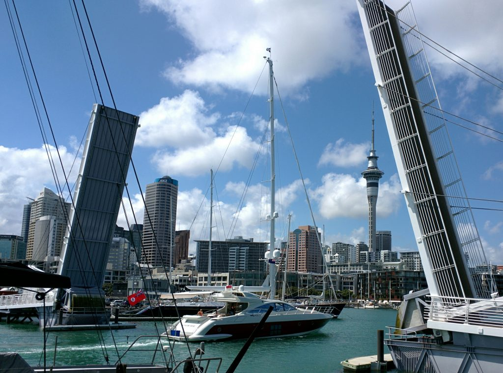 At the harbour in Auckland