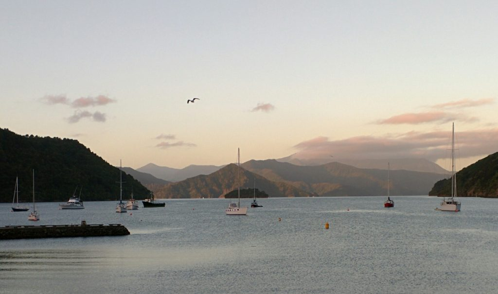 Picton Harbour, New Zealand (3 Feb 2015)
